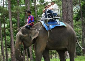 Fairy Rock & Elephant riding