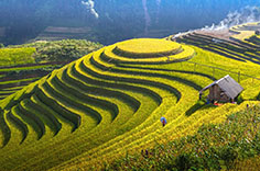 Natural Trails of The Northern Viet Nam