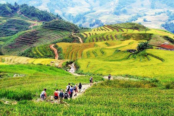 things-to-do-in-sapa-trekking